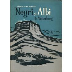 Negri si Albi la Waterberg (Ed. Stiintifica)