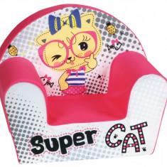 Fotoliu din burete Super Cat