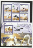 Fauna,pasari de balta,Comore.
