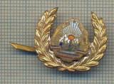 Y 971 INSIGNA - EMBLEMA BASC PIONIERI- UN BRAT PRINDERE RUPT-PENTRU COLECTIONARI