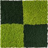 Gradini verticale licheni conservati ARTFLORA GreenMixt 0.25mp