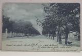 IASI - BULEVARDUL COPOU , CARTE POSTALA ILUSTRATA , DESTINATAR ELIZA XENOPOL, MONOCROMA, CIRCULATA , CLASICA , DATATA 1900