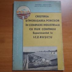 Cresterea si ingrasarea porcilor in complexe industriale cu flux continuu. Experimentat la I. C. Z. Rusetu