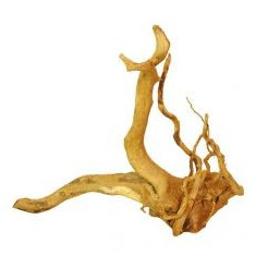 Cuckoo Root rădăcină pentru acvariu - 56 x 25 x 45 cm