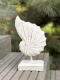 Decoratiune Exotic Shell Tip I