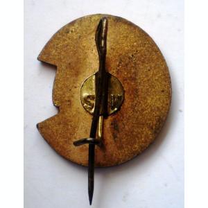 I.537 INSIGNA ROMANIA COMANDANT PIONIERI PIONIER h22mm