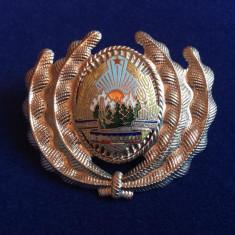 INSIGNA MILITARA - CUC/CASCHETA/COIFURA -EMBLEMA-MILITIA-RSR (culoare argintie)