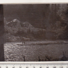 bnk foto Plute pe Bistrita - anii `60