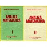 Analiza matematica vol.I - II Miron Nicolescu