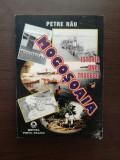 ISTORIA UNEI TRAGEDII MOGOSOAIA- PETRE RAU ( roman document )