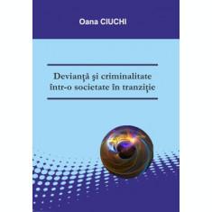 Devianță și criminalitate într-o societate în tranziție - Oana CIUCHI