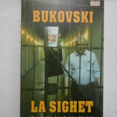 BUKOVSKI LA SIGHET - ROMULUS RUSAN