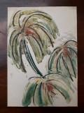 28. Plante, acuarela veche pictura