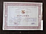 Diploma veche, Romania 1952: CFR - Colectivul Sportiv Locomotiva