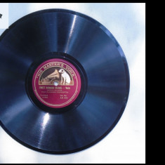 Hilo Hawaiian orchestra - disc patefon/gramofon