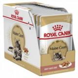 Royal Canin Maine Coon Adult, bax hrană umedă pisici, (în sos), 85g x 12