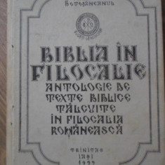 BIBLIA IN FILOCALIE VOL.2 ANTOLOGIE DE TEXTE BIBLICE TALCUITE IN FILOCALIA ROMAN