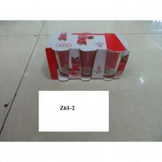 Z61-02 PAHARUTE TUICA SET 6 BUC