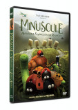 Minuscule: Aventura furnicutelor ratacite / Minuscule: Valley of the Lost Ants - DVD Mania Film