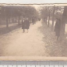 bnk foto - Buzau - Parcul Crang - 1941