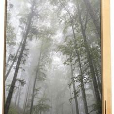 Boxa Portabila Energy Sistem Frame Forest, Bluetooth, 50W (Multicolor)