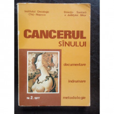 CANCERUL SANULUI