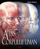 Marele atlas ilustrat al corpului uman