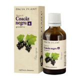Cumpara ieftin Coacaz Negru Gemoderivat, 50 ml, Dacia Plant