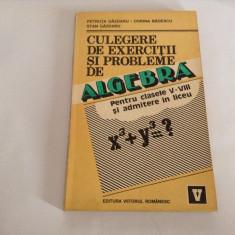 Culegere de algebra pt clasele V-VIII si admitere in liceu de Petruta Gazdaru