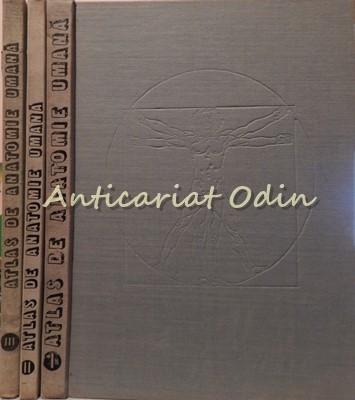 Atlas De Anatomie Umana I-II-III - Mircea Ifrim (3 volume) foto