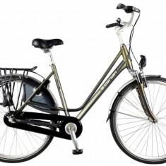 Bicicleta Oras Devron 2830 Darwin L 530mm Gri Mat 28