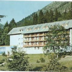 "CPI B 11563 CARTE POSTALA - POIANA BRASOV. HOTEL "" BRADUL"", Necirculata, Fotografie"