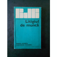 SANDA GHIMPU - LITIGIUL DE MUNCA