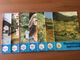 apicultura in romania 1989 lot 4 reviste si romania apicola 1990 lot 7 reviste