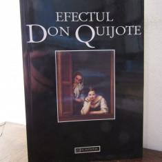 VICTOR IERONIM STOICHITA - EFECTUL DON QUIJOTE