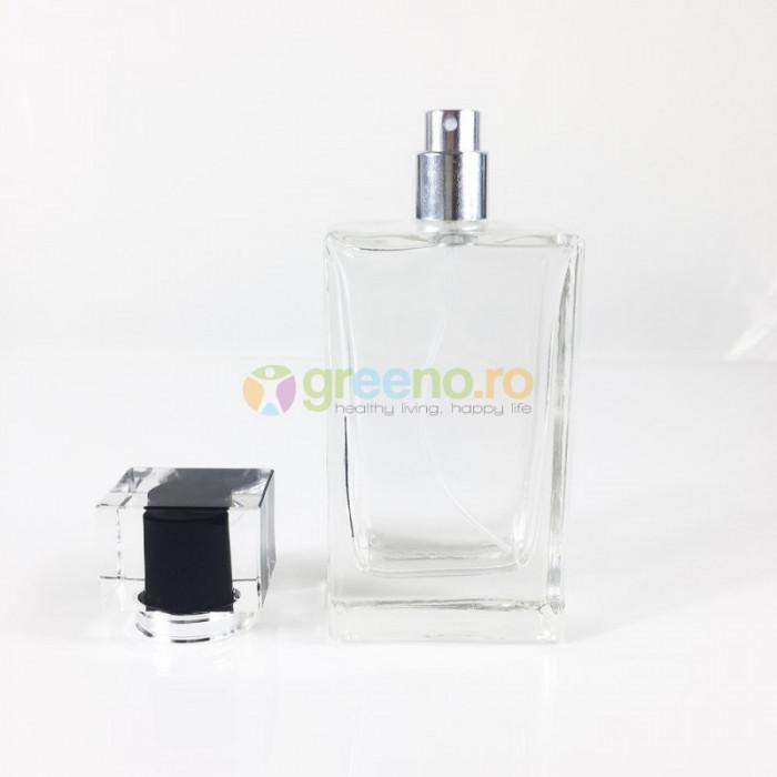 Sticla Parfum 100ml, Capac, Pulverizator Infiletabil