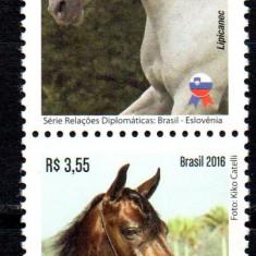 BRAZILIA 2016, Fauna - Cai, serie neuzata, MNH, Nestampilat
