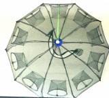 Halau, Crasnic, Varsa tip umbrela cu 10 intrari