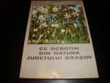 Morariu/Ularu/Ciochia-Ce ocrotim din natura Judetului Brasov - 1971