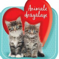 Animale dragalase/Cuberdon