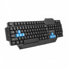 Tastatura Multimedia Player Esperanza, USB