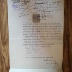 Act vânzare imobil Câmpulung Muscel, Maria Livezeanu, Maria Anghel Nicolau, 1928