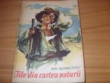 I. AGARBICEANU  -  FILE DIN CARTEA NATURII  ( ilustratii Coca Cretoiu-Seinescu )