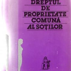 DREPTUL DE PROPRIETATE COMUNA A SOTILOR - DUMITRU LUPASCU