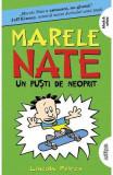 Marele Nate Vol.3: Un pusti de neoprit - Lincoln Peirce