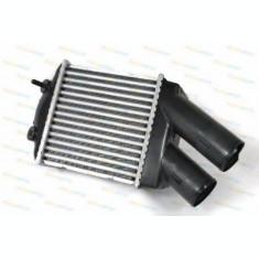Radiator intercooler RENAULT MEGANE I Break (KA0/1) (1999 - 2003) THERMOTEC DAR001TT