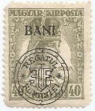 Romania, Emisiunile Cluj, LP 8e/1919, Carol si Zita, BANI sus, eroare 1, MNH, Nestampilat