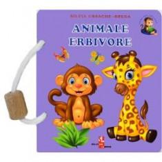Animale erbivore - Silvia Ursache-Brega