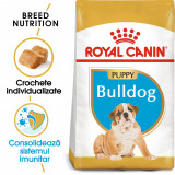 Royal Canin BULLDOG Puppy Hrana Uscata Caine