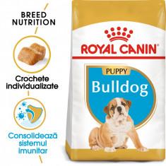 Royal Canin BULLDOG Puppy Hrana Uscata Caine foto